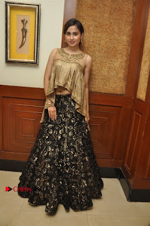 South Indian Celebrities Pos at Love For Handloom Collection Fashion Show  0107.jpg