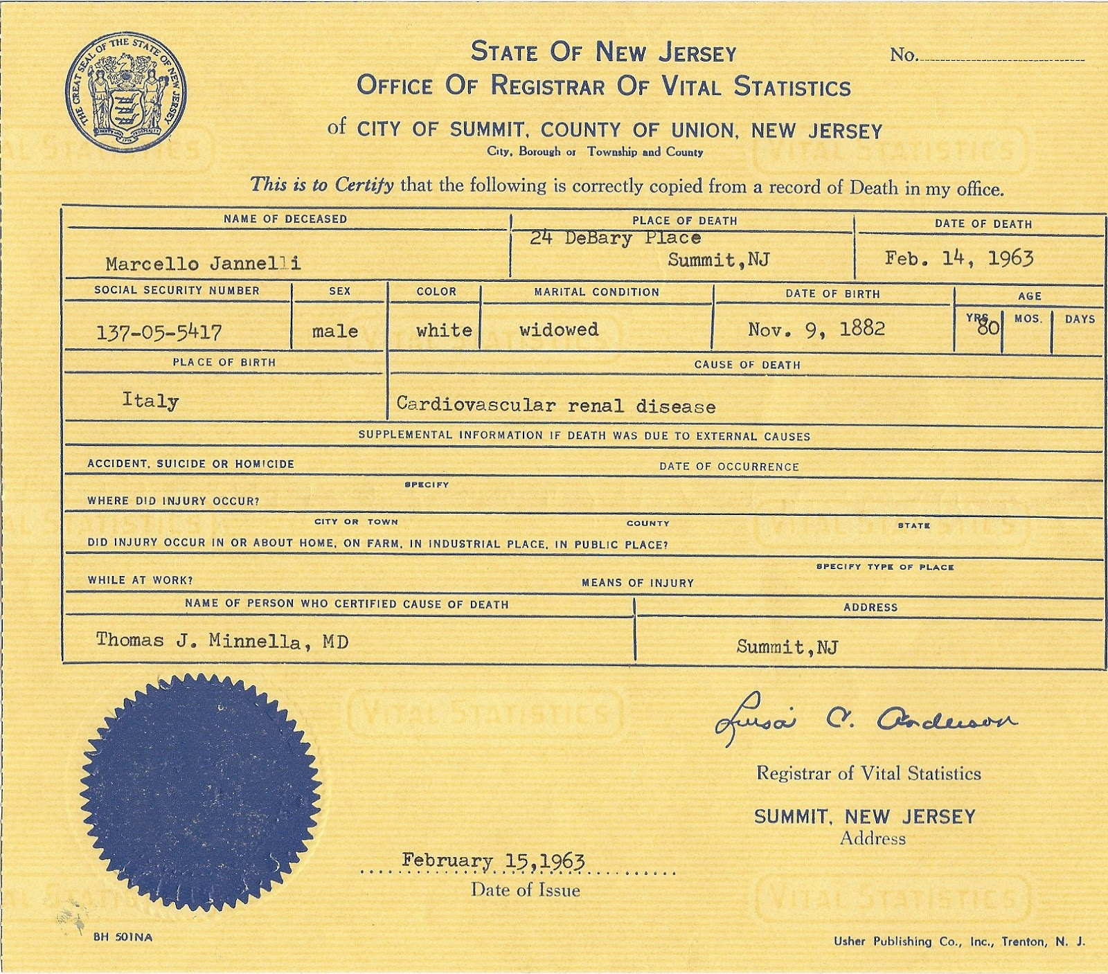 References On Resume Summit County Birth Certificate References