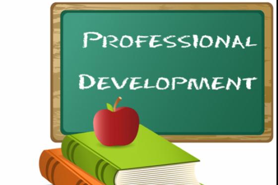Dissertation in profesional developmenet