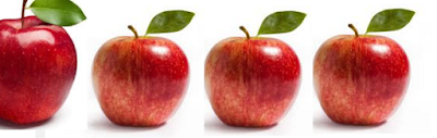 Apple Fruit rich food in carbohydrates