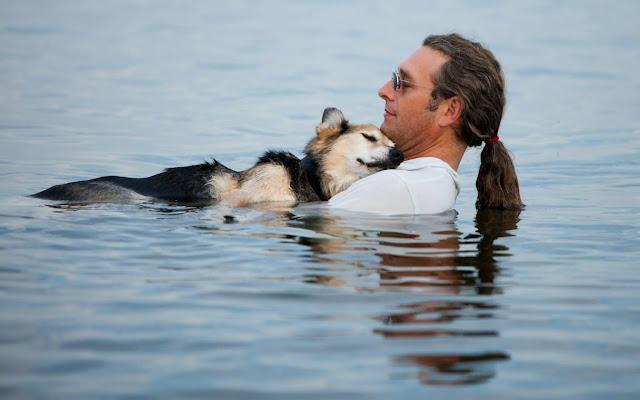 Каждый вечер этот мужчина купает свою больную собаку в озере, так как вода заставляет боли утихнуть
