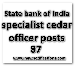 SBI_specialist cedar officer posts