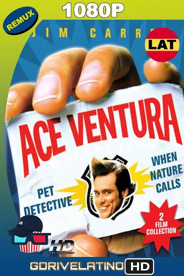 Ace Ventura Colección (1994-1995) BDRemux 1080p Latino-Ingles MKV