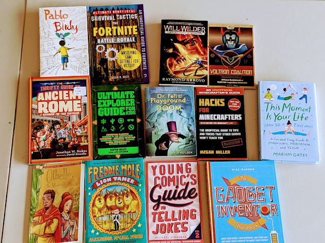 chapter book lot for boys