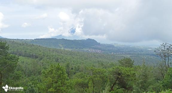 Gunung Telomoyo terselimuti kabut