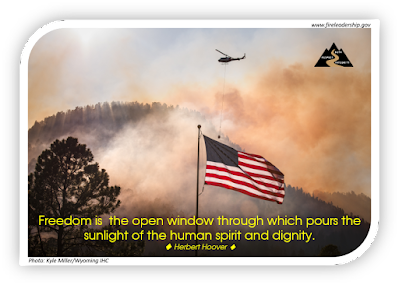 flag in front of a wildfire