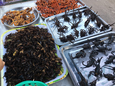 Exotic Food, tarantula, scorpion, frog, etc