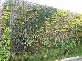 Taman Vertikal | Vertical Garden | jasataman.co.id XI