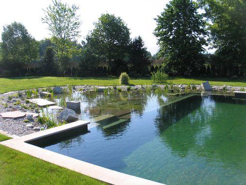 Blogue sur l'écologie : la piscine écologique