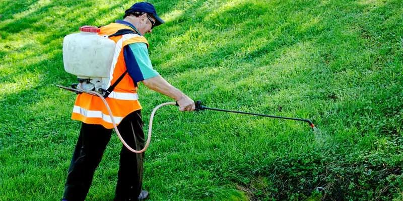 Best Lawn Sprayer Buyer's Guide
