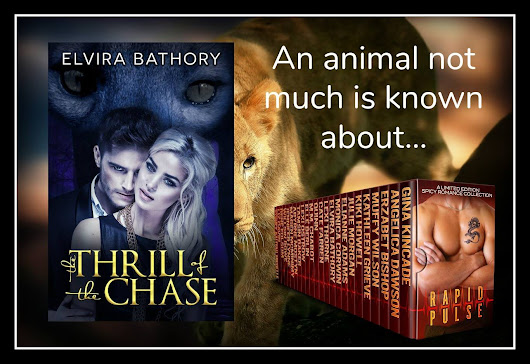 RAPID PULSE: Author Spotlight's The Thrill of the Chase by @ElviraBathory