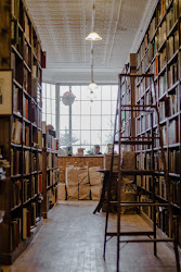 luxury hamm weasley ron editing leggere dovrebbero autobiografie tutti che clutter unsplash struktur