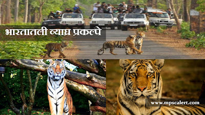 Tiger Sanctuary