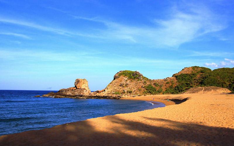 Thuê xe đi biển Sa Huỳnh