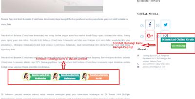 Contoh Tombol Hubungi Pada Sebuah Website Klinik