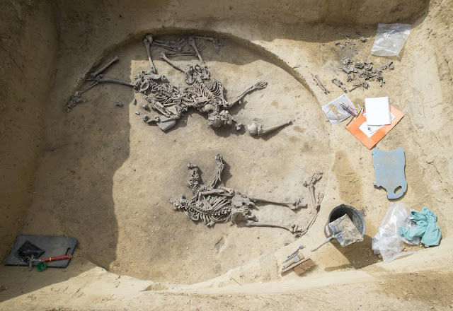 France unearths bones from 6,000-year-old Neolithic massacre