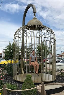 https://1.bp.blogspot.com/-Jofpk7owrGc/XDKLz0ARJEI/AAAAAAAAFYQ/xlxLUGs-6qIC6XQo9JsnoO0AhOg93QQngCLcBGAs/s400/birdcage.jpg
