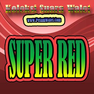 Suara Walet Super Red (Panggil)