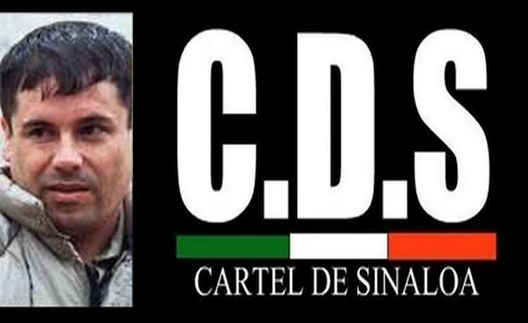 """El Cártel de Sinaloa la organización que forjó """"El Chapo"""", es el cartel de México con más alertas de EU por lavado de dinero"""