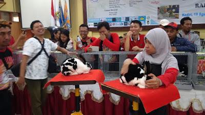 Hasil Kontes Kelinci ARBA kediri 2017