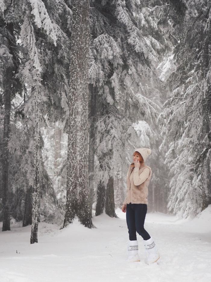 Promenade en forêt dans le Pilat enneigé