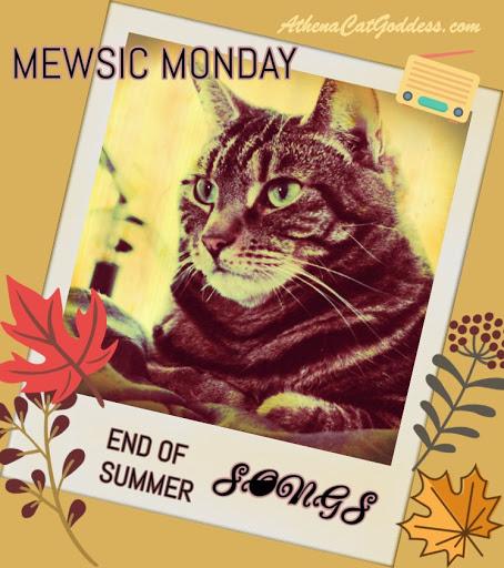 Mewsic Monday