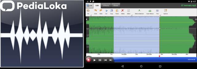 Aplikasi WavePad