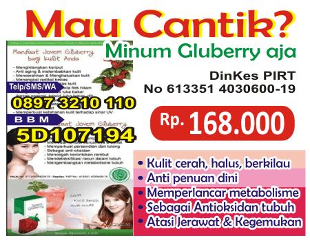 harga gluberry protein untuk diet, gluberry testimoni, harga gluberry collagen minuman, harga gluberry herbal untuk mengencangkan kulit bokong
