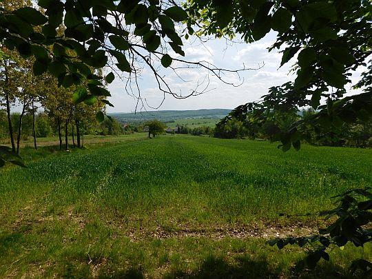 To są już pola Huty Szklanej.