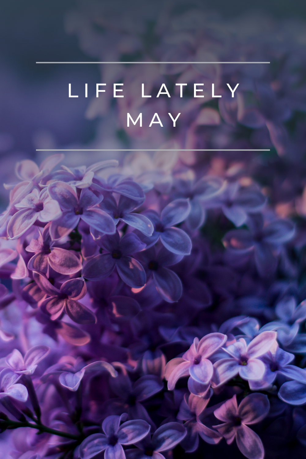 Life Lately | May