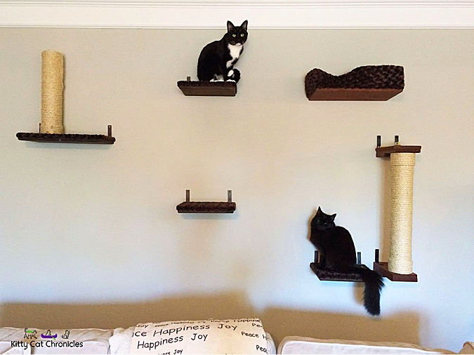 Cat Friendly home cat shelving system