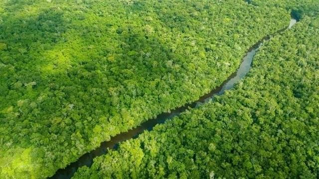 """O ministro do Clima e Meio Ambiente da Noruega, Ola Elvestuen, anunciou hoje o congelamento de novos repasses ao Fundo Amazônia, reserva de capital estrangeiro gerida pelo BNDES e destinada a ações de preservação ambiental e combate ao desmatamento. Segundo informações do jornal """"Dagens Næringsliv"""", o valor bloqueado é de 300 milhões de coroas norueguesas, o equivalente a R$ 134 milhões."""