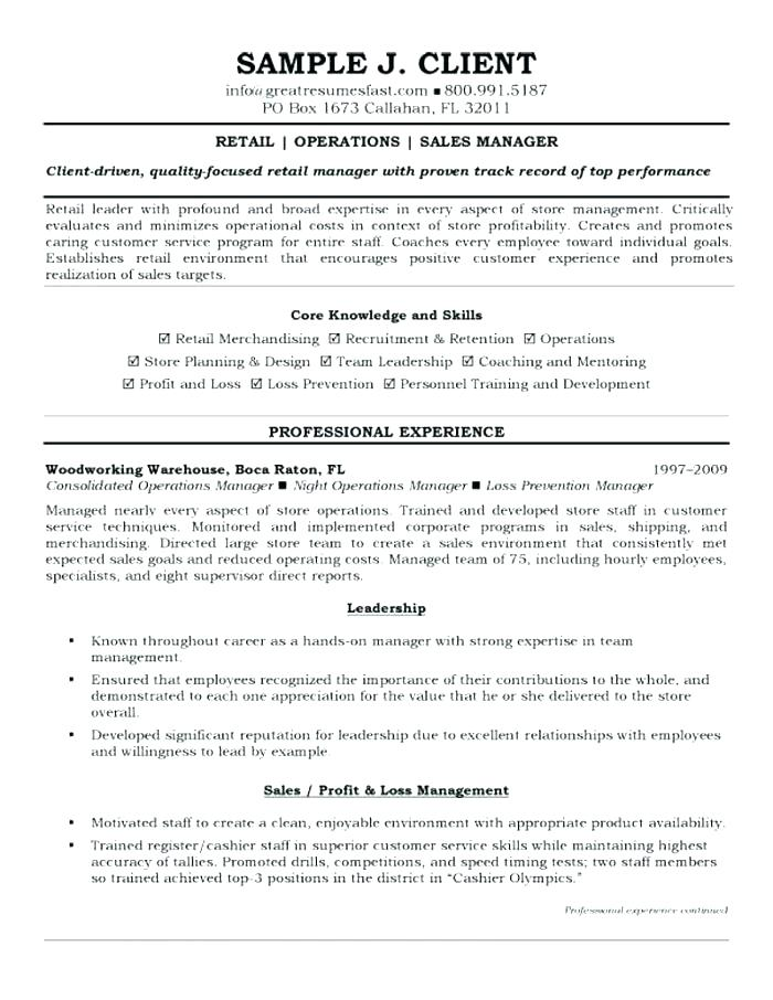 Professional Resume Samples 2019