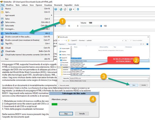 conversione ebook in audiolibro