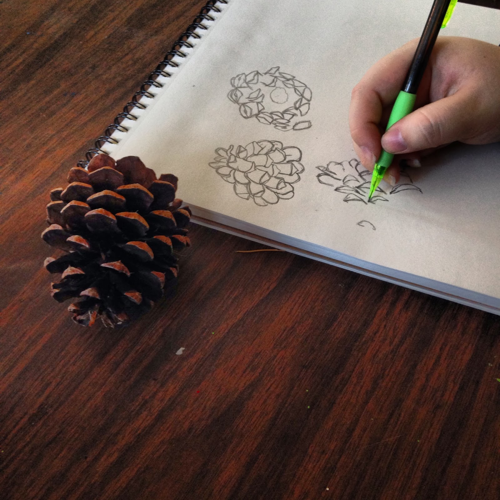 Ms M S Art Class Contour Line Drawing Sketchbook
