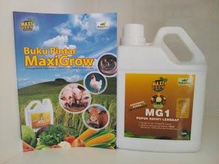 MaxiGrow pupuk hayati biotekhnology