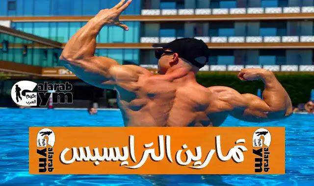 الطريق الوحيد لصدم عضلة ترايسبس للحصول على أكبر ذراع ممكن في وقت قصير ( شرح ) Triceps exercices