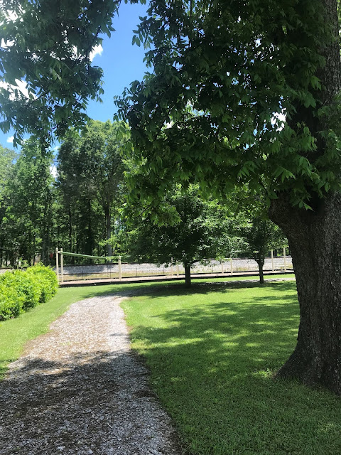A gravel walk is surrounded by grass and a few trees. In the near distance is a zip line.