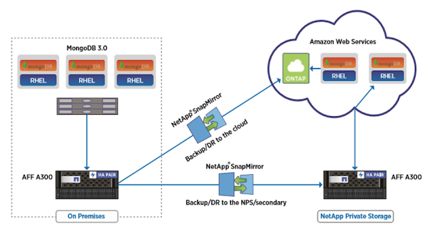 Diagram Konektifitas NetApp