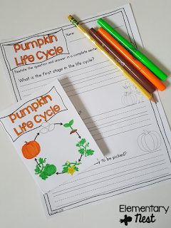 Pumpkin Life Cycle mini book and comprehension- October Activities for a primary classroom- PLUS a freebie!