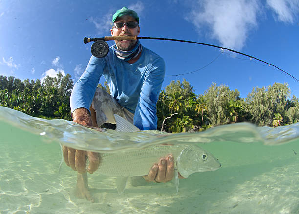 Fishing in the Caribbean  - What You Need To Know