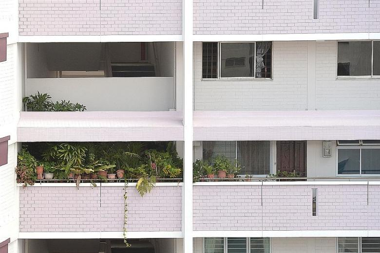The number of plants in the eighth-storey HDB corridor in Block 101 Pasir Ris Street 12 make it difficult for people to pass through, said a neighbour, who posted her complaint on citizen journalism website Stomp last week.