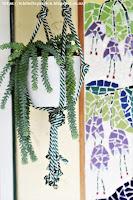 Sedum Hanging Succulent