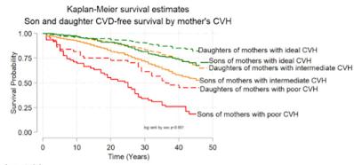 母親の心血管ヘルスと心血管疾患の時期