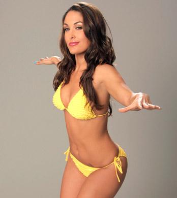 Hot And Sexy Divas Model Brie Bella In Swimwear