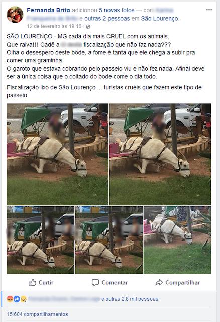 Publicação em rede social atraiu usuários que protestaram contra o uso de charretes em São Lourenço (MG) (Foto: Fernanda Brito/Reprodução/Facebook)