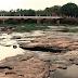 Período da Piracema começou com restrições à pesca no rio Mogi Guaçu