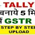 GSTR 1 Return Offline Tally Erp 9 Se File Kaise Kare