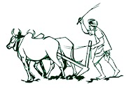 இந்தியாவில் வேளாண்மைப் புரட்சிகள் Agricultural Revolution in India
