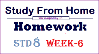 std 8 homework week 6